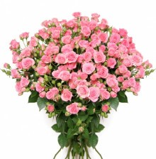 Заказ цветов поштучно доставка цветов в хабаровске стрекоза